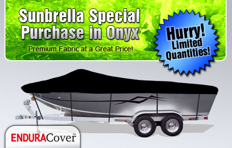 Sunbrella Special Purchase in Onyx - Hurry! Limited Quantities.